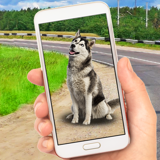 Collect Pocket Dogs 1.1 APK Mod for android Download android app