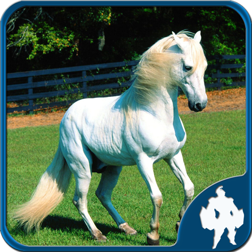 Horses Jigsaw Puzzles 1.9.0 APK PROCrack for android Download android app